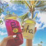 お台場に「ハワイ」がやってきた!【ハワイアンフェス】で南国体験♪のサムネイル画像
