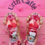 大人女子のつぼドンピシャ♡話題のオーガニックカフェ【Urth Caffe】のサムネイル画像