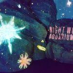 水族館なのに〇〇!?【ナイトワンダーアクアリウム】でトキメキデートのサムネイル画像
