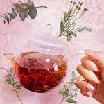 美容&健康オタク必見!韓国の愛されスイーツ【伝統茶】に注目♡のサムネイル画像