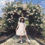 もうすぐ秋本番!関東近郊のフォトジェニックな【秋の花畑】4選♡のサムネイル画像