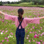 秋のお花といえばコレ!インスタ映えも◎な【コスモスの名所3選】♡のサムネイル画像
