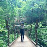 自然の中でリフレッシュ♡この時期こそ行くべき!【高尾山】のススメのサムネイル画像
