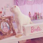 猫ちゃんだってInstagramする時代♡お洒落【にゃんすたグラマー】!のサムネイル画像