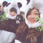 お腹も心も満たされよう♡上野の【パンダスイーツ】が可愛すぎる♡のサムネイル画像